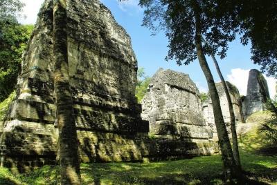 Des rayons lasers révèlent les mystères de la civilisation Maya