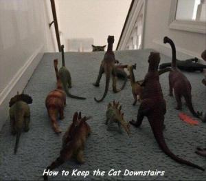L'astuce pour que les chats restent en bas